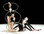 Художественная гимнастика - системы Ф. Дельсарта и Ж. Далькроза