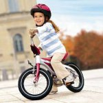 Необходимость покупки велосипеда и  общие критерии выбора